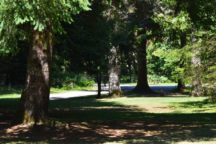 Open-area